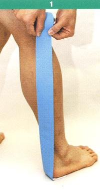 腓腹筋1.jpg